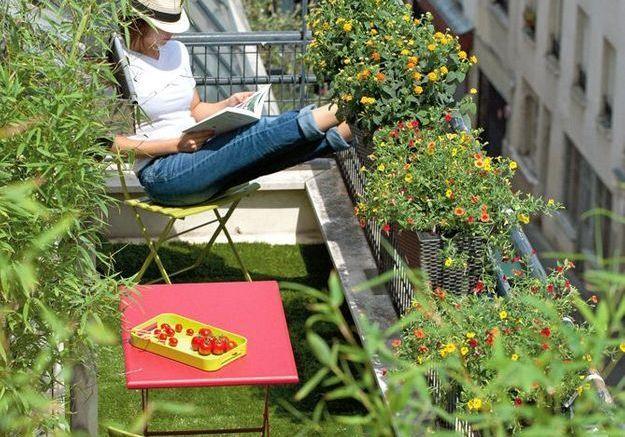 Un balcon végétal