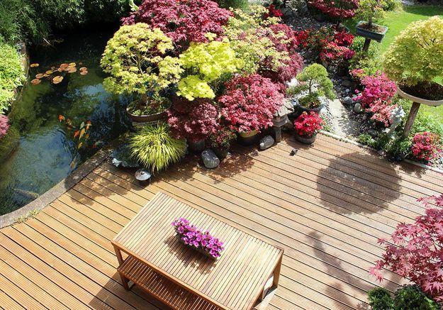 La végétation au cœur du jardin zen