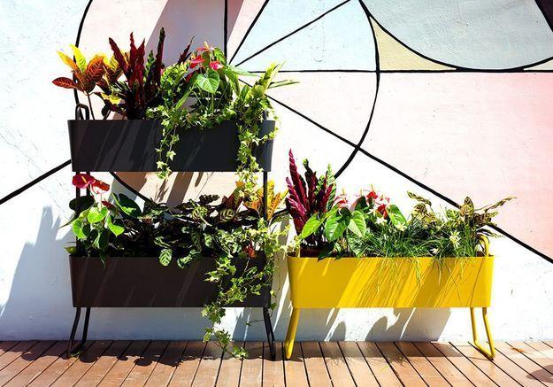 Jardinière design à deux étages