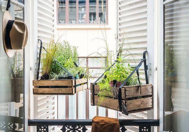 Jardinière déco : nos 20 modèles coups de cœur pour un jardin fleuri