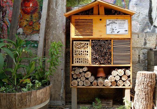 L'hôtel à insectes, le 3 étoiles du jardin écolo