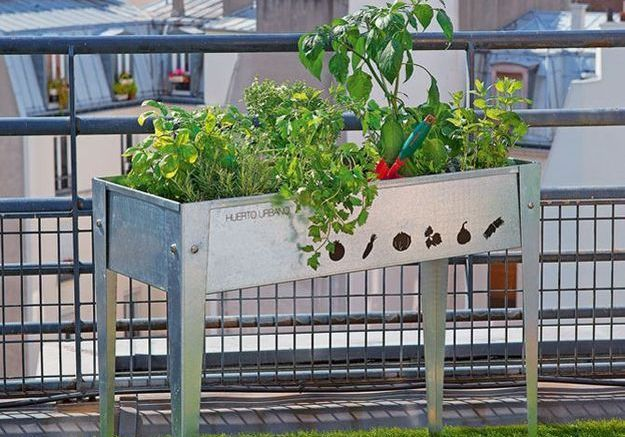 Le choix des végétaux
