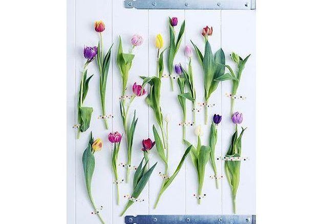 signification fleur : découvrez la signification de votre fleur