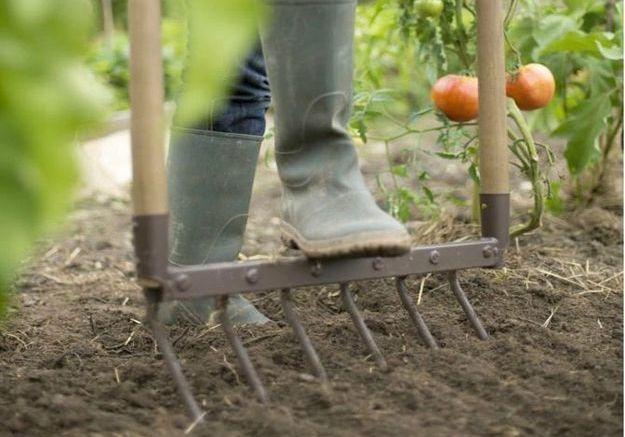 2. Préparer le sol de son jardin avant l'hiver