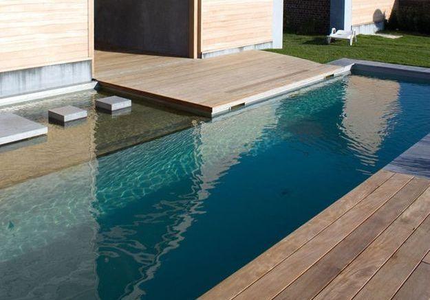 Coût d'une piscine naturelle