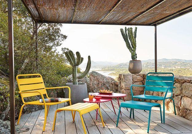 Succombez aux cactus version outdoor