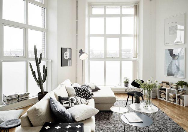 Cactus dans un salon black & white