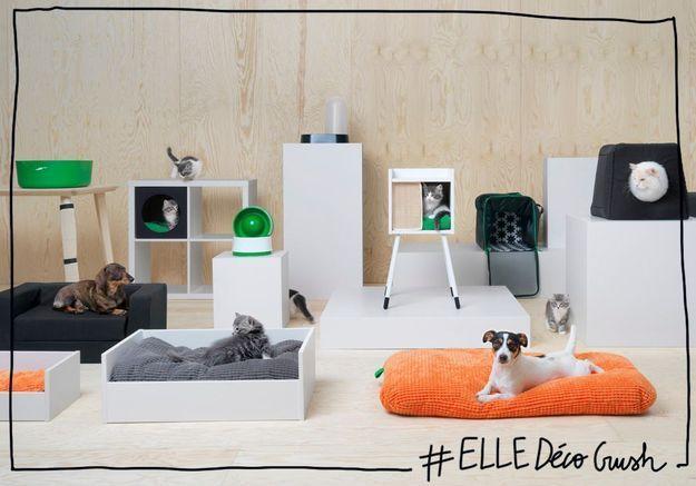 #ELLEDécoCrush : Ikea sort enfin une collection stylée pour animaux de compagnie !