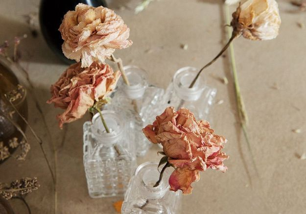 Le (très) grand retour des fleurs séchées en 20 inspirations
