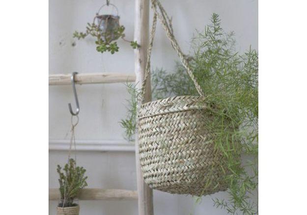Un panier suspendu pour les plantes