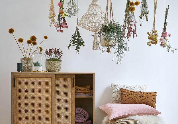 Sommeil : 7 plantes à mettre dans sa chambre pour mieux dormir