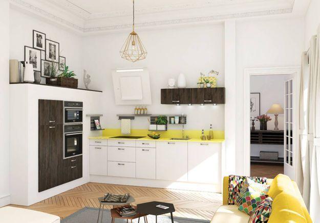 Une petite cuisine intégrée au salon