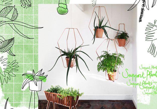 Tendance : les plantes prennent de la hauteur