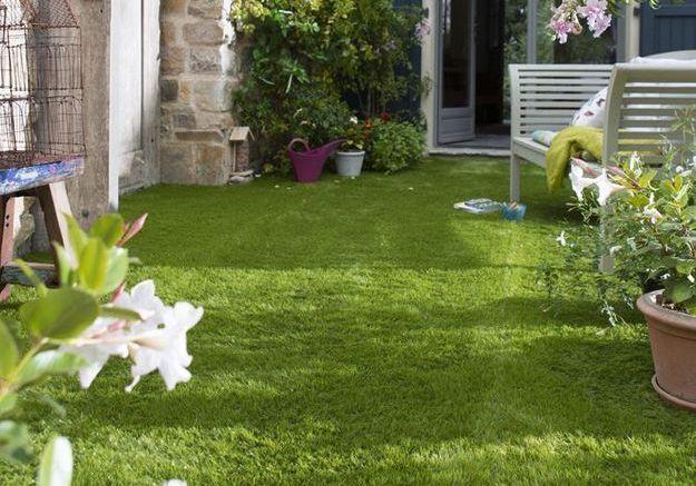 La pelouse