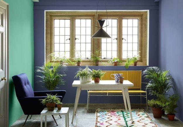 Un jardin d'hiver malin via des plantes qui remplacent la petite déco