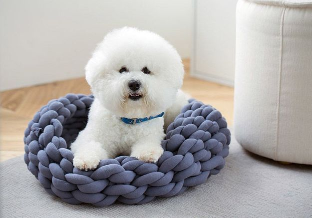 Un DIY pour réaliser un panier en grosses mailles pour chien et chat
