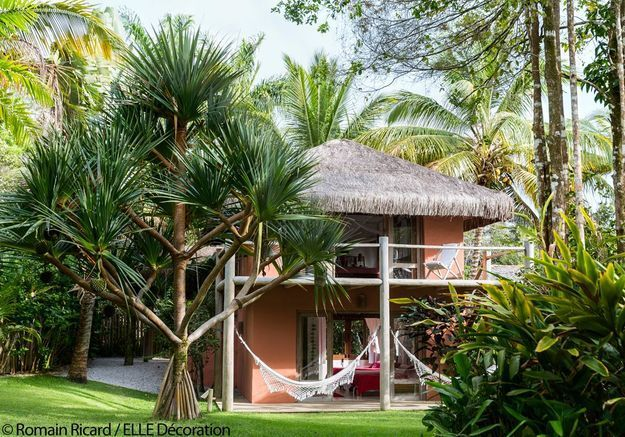 Une maison perdue dans une forêt de cocotiers