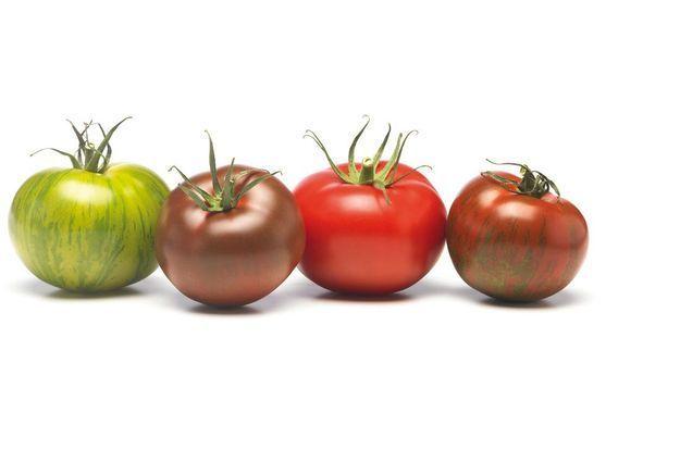 20 possibilités autour de la tomate