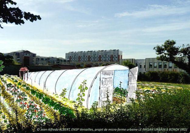 « Potageons Ensemble » par Knorr : le collectif qui encourage l'agriculture urbaine