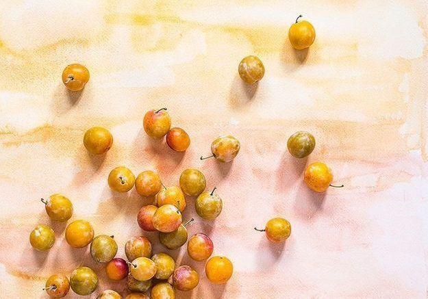 La mirabelle, la petite prune qui a tout d'une grande !