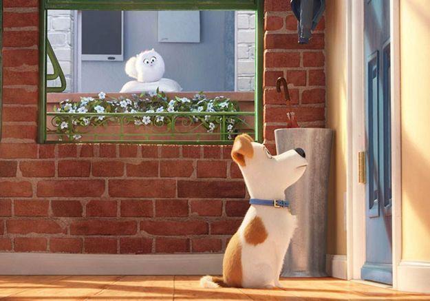 « Comme des bêtes » : un film d'animation vraiment poilant