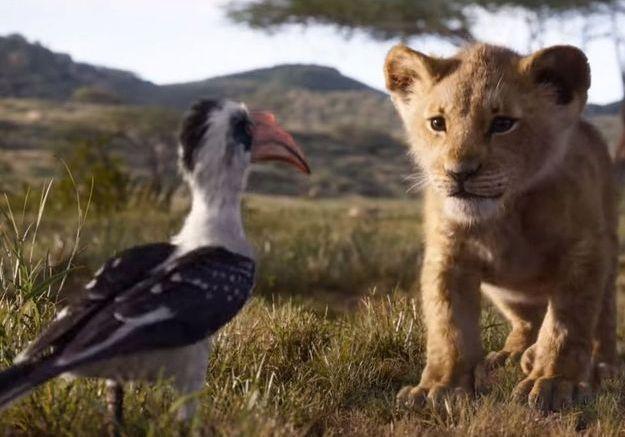 La nouvelle bande-annonce du « Roi Lion » : une pépite visuelle fidèle au dessin animé de 1994