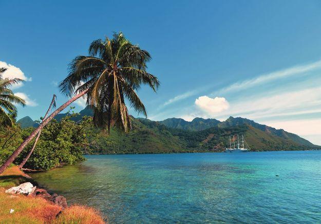 La crique de Robinson à Tahiti