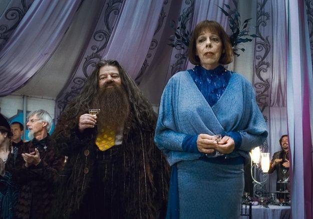 Harry Potter : une nuit dans la cabane d'Hagrid, ça vous tente ?
