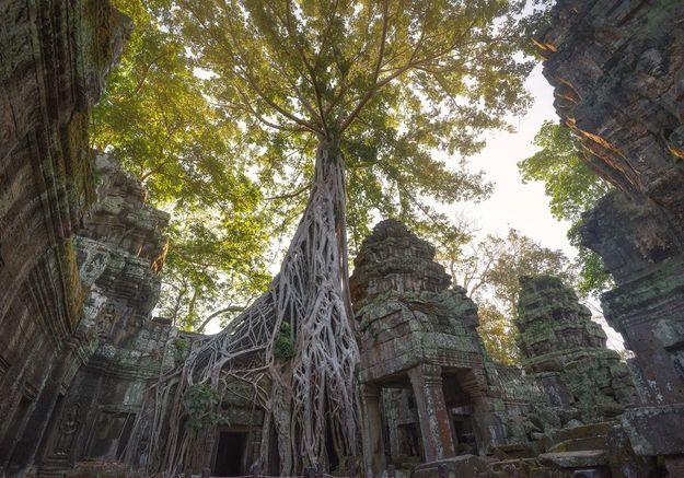 Le Temple d'Angkor Vat à Siem Rap, au Cambodge