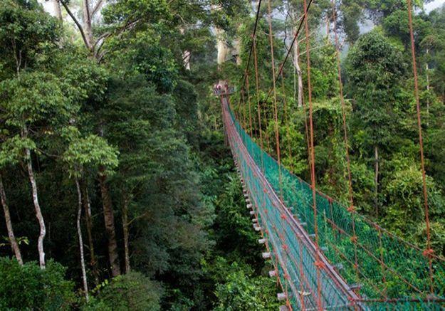 Pahang, en Malaisie