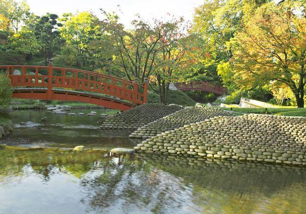 Dans les jardins d'Albert Kahn de Boulogne