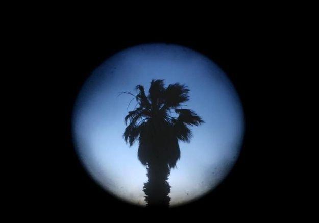 Le clip de la semaine : « Night Owl », réalisé par Quentin Dupieux