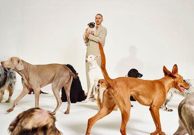 « Musique de niche », un album pour... les chiens