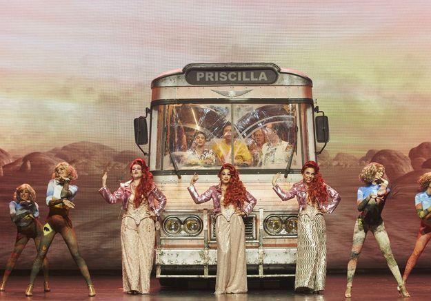 «Priscilla» : on raffole de ces folles du désert