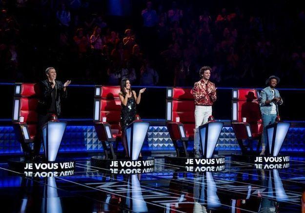 The Voice : un ancien de la Star Ac' et une ancienne représentante de l'Eurovision