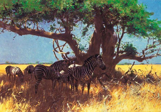C'est mon histoire : « J'ai créé ma ferme en Afrique »