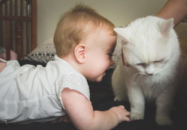 Ces enfants avec leurs animaux vont vous faire craquer