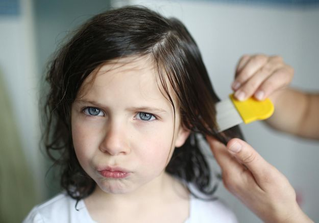 Les poux ont un salon de coiffure