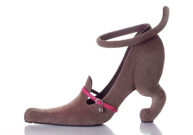 Mode diaporama chaussures kobi levi chien