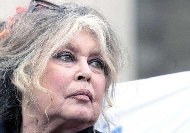 Héritage de Johnny Hallyday : Brigitte Bardot défend Laura Smet et David Hallyday