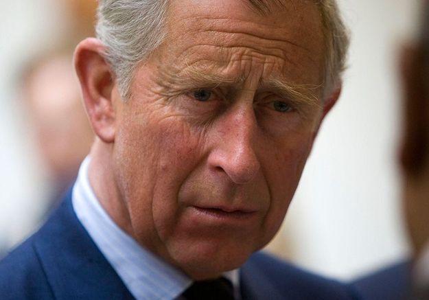 Interview de Meghan et Harry : Le prince Charles voulait leur adresser une réponse « point par point »