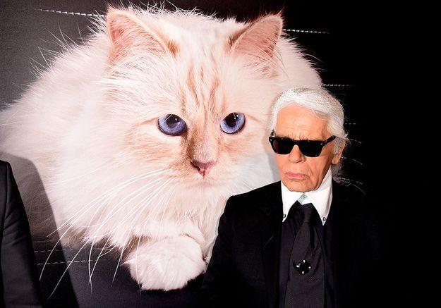 Karl Lagerfeld : non, son chat Choupette n'héritera pas de sa fortune