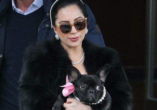 Lady Gaga : le promeneur de ses chiens s'exprime depuis son lit d'hôpital après le drame