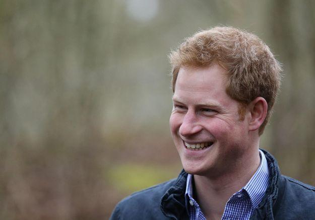 Le prince Harry à la recherche de la future mère de ses enfants