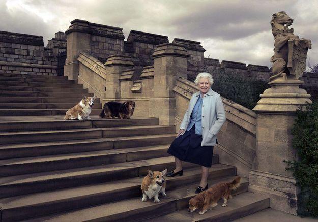 La reine et ses corgis adorés