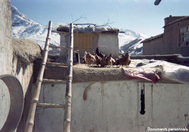 Les Oeufs De La Liberté Ghunchagull