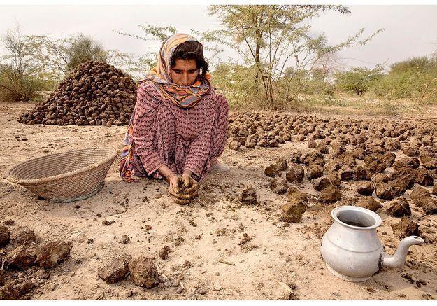 Une femme faisant sécher du fumier de vache