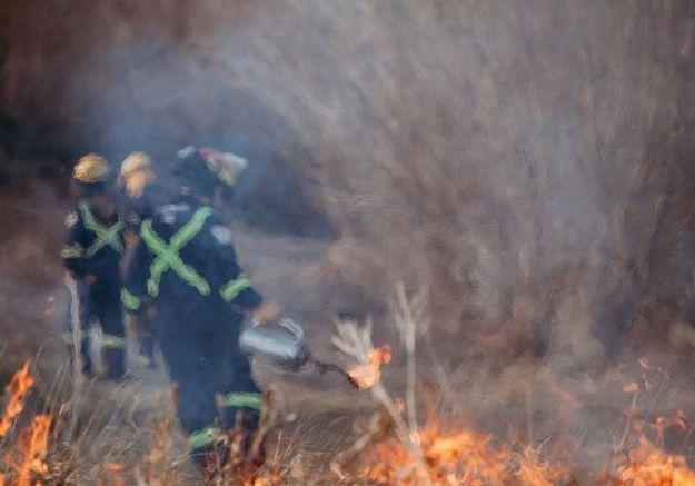 Canada : un « dôme de chaleur » fait des dizaines de morts