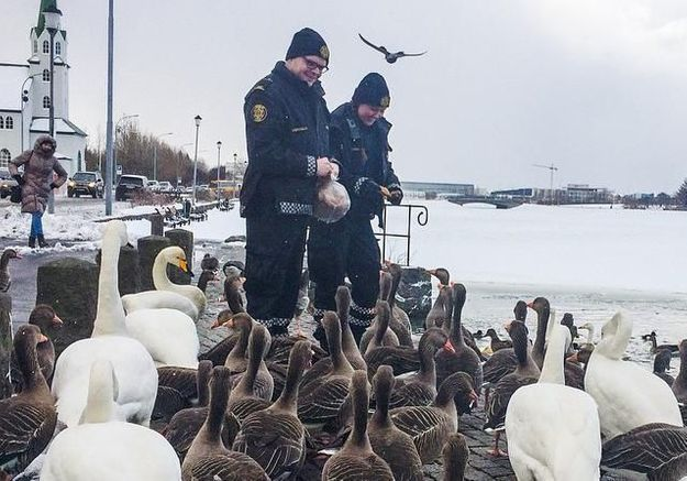 #PrêtàLiker : vous allez adorer les policiers de Reykjavik