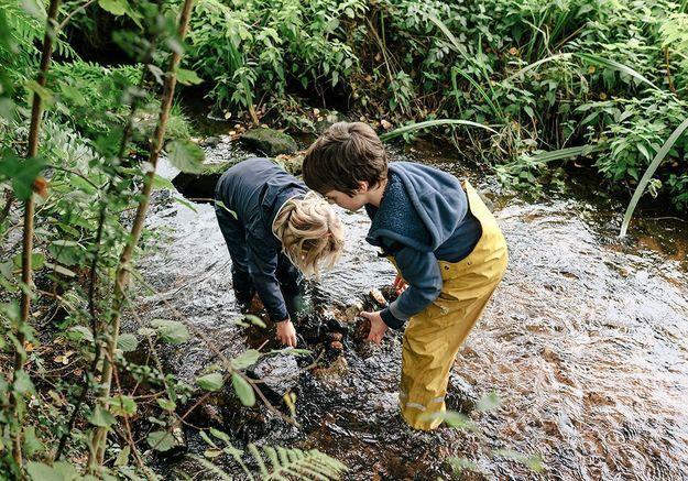 Reportage : faire l'école dans la forêt